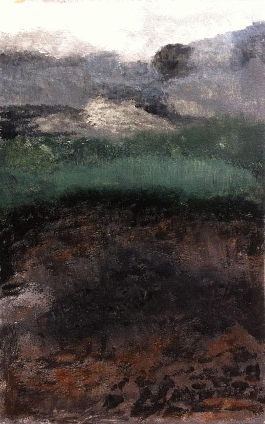 N°223 - Sentier de garrigue - Acrylique sur papier - 52 x 33 cm - 16 février 2013